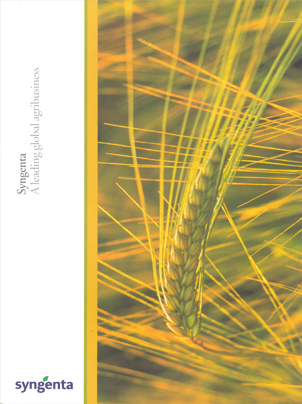 Syngenta Launch Brochure